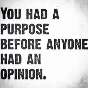 Purpose vs opinion